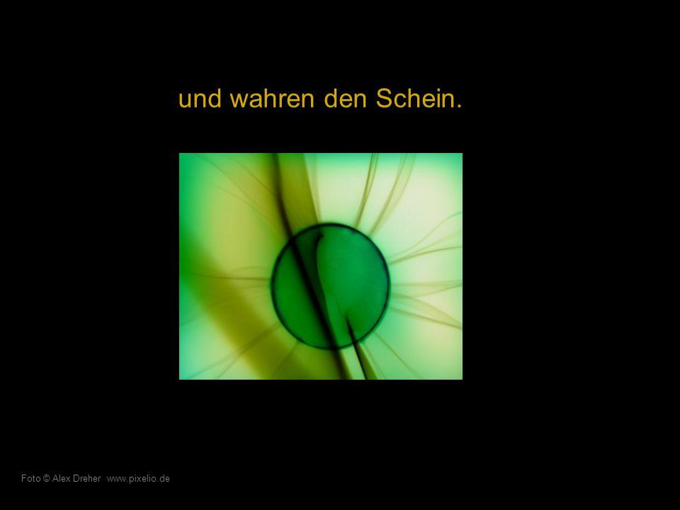 Ihre Kapriolen schärfen das Auge… Foto © Franz Haindl www.pixelio.de