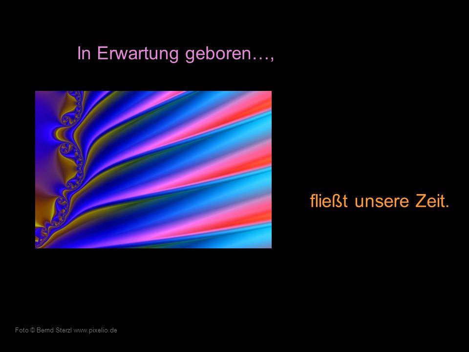 Der Flug unserer Gedanken begleitet uns in dieser Welt. Foto © A.Rausch www.pixelio.de