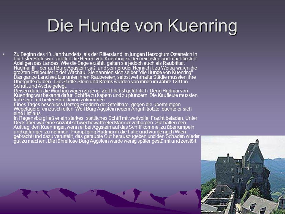 Die Hunde von Kuenring Zu Beginn des 13. Jahrhunderts, als der Ritterstand im jungen Herzogtum Österreich in höchster Blüte war, zählten die Herren vo