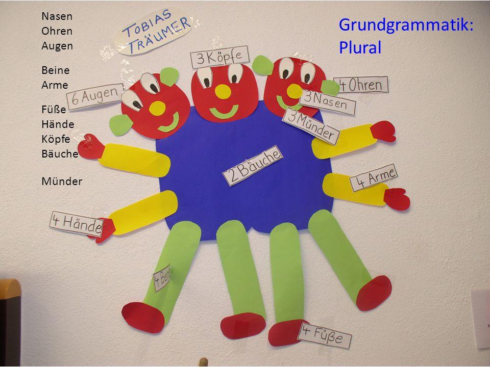 Ingelore Oomen-Welke Pädagogische Hochschule Freiburg 19 Grundgrammatik: Plural Augen Füße Hände Köpfe Bäuche Beine Arme Nasen Ohren Münder