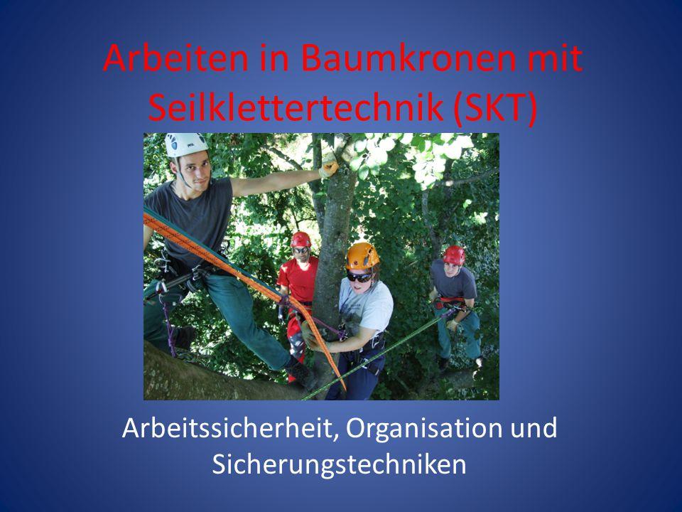 Arbeiten in Baumkronen mit Seilklettertechnik (SKT) Arbeitssicherheit, Organisation und Sicherungstechniken