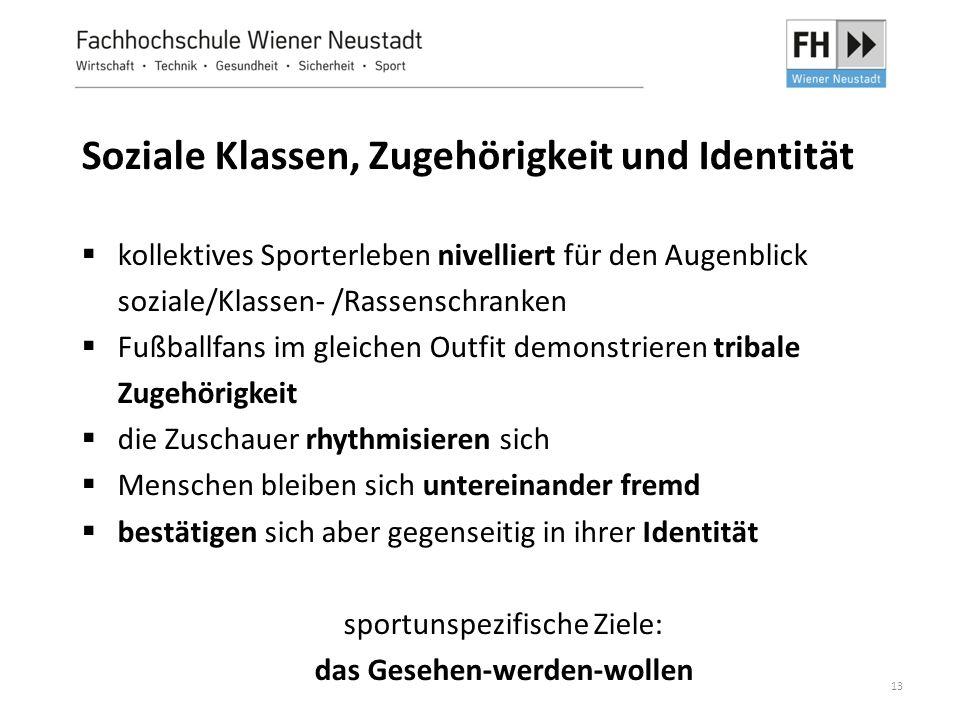 13 Soziale Klassen, Zugehörigkeit und Identität  kollektives Sporterleben nivelliert für den Augenblick soziale/Klassen- /Rassenschranken  Fußballfa
