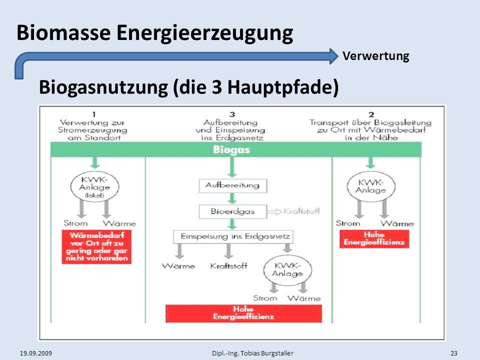 19.09.2009 Dipl.-Ing. Tobias Burgstaller 23 Biomasse Energieerzeugung Biogasnutzung (die 3 Hauptpfade) Verwertung