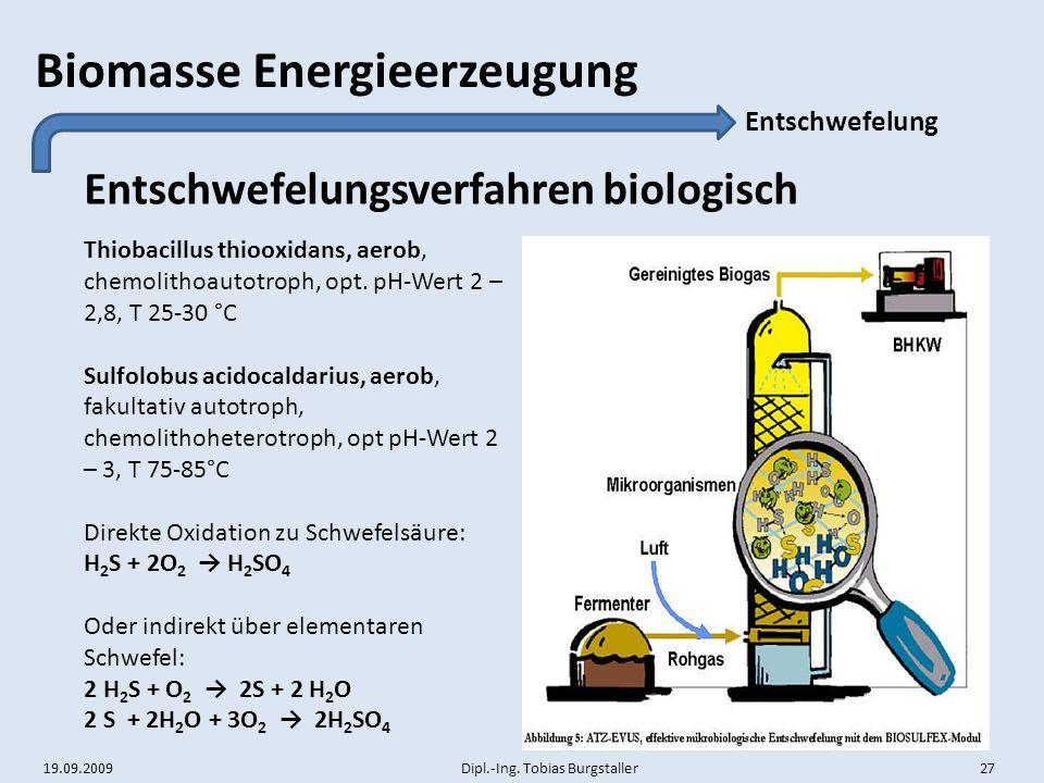 19.09.2009 Dipl.-Ing. Tobias Burgstaller 27 Biomasse Energieerzeugung Entschwefelungsverfahren biologisch Entschwefelung Thiobacillus thiooxidans, aer