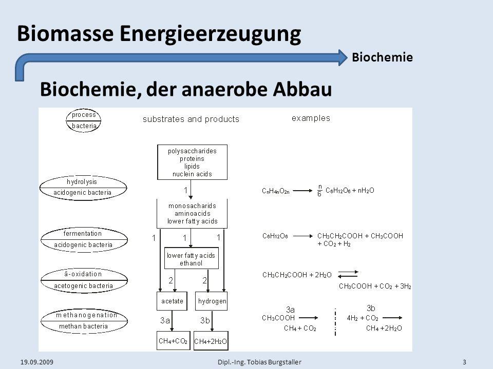 19.09.2009 Dipl.-Ing. Tobias Burgstaller 3 Biomasse Energieerzeugung Biochemie, der anaerobe Abbau Biochemie