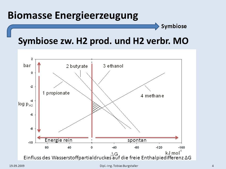 19.09.2009 Dipl.-Ing. Tobias Burgstaller 4 Biomasse Energieerzeugung Symbiose zw. H2 prod. und H2 verbr. MO Symbiose Einfluss des Wasserstoffpartialdr
