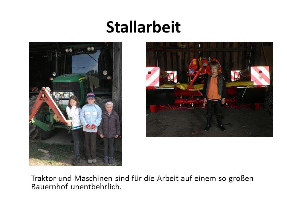 Stallarbeit Traktor und Maschinen sind für die Arbeit auf einem so großen Bauernhof unentbehrlich.