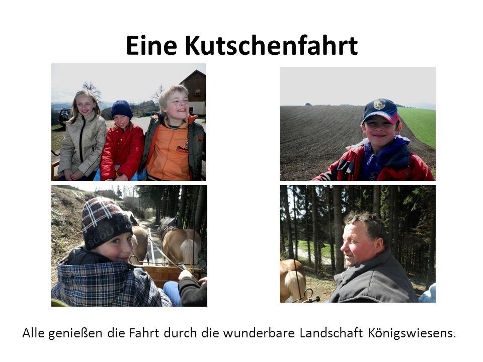 Eine Kutschenfahrt Alle genießen die Fahrt durch die wunderbare Landschaft Königswiesens.