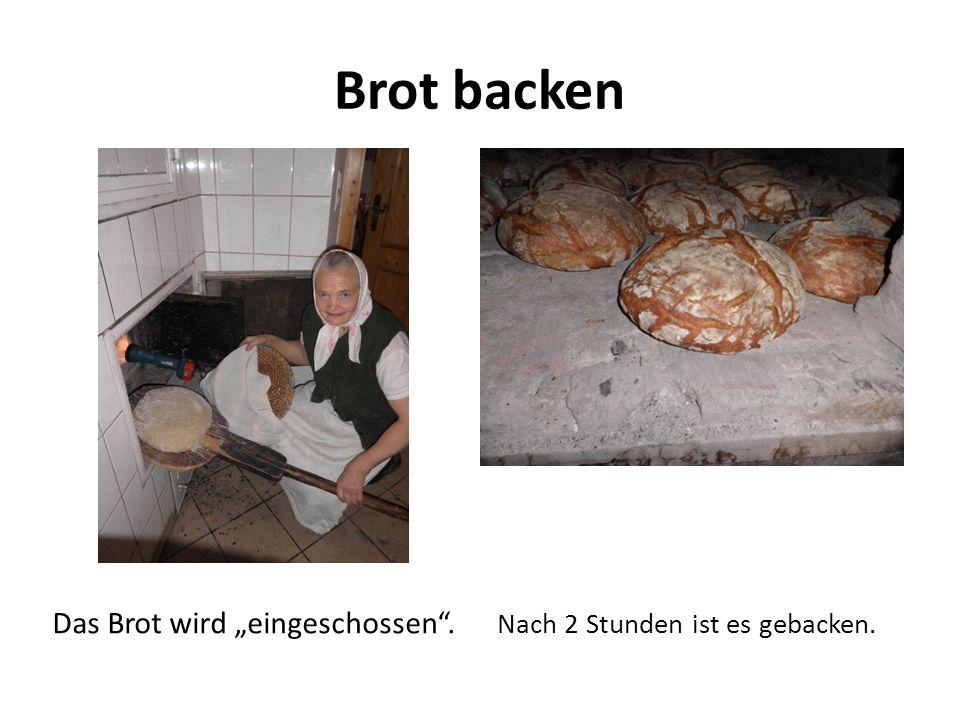 """Brot backen Das Brot wird """"eingeschossen"""". Nach 2 Stunden ist es gebacken."""