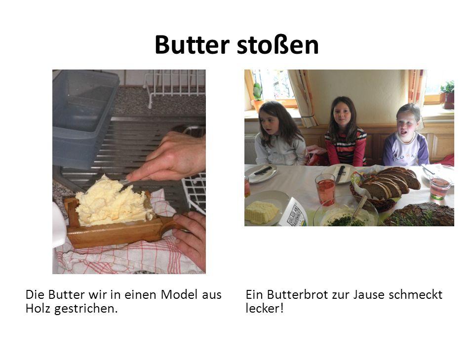 Butter stoßen Die Butter wir in einen Model aus Holz gestrichen. Ein Butterbrot zur Jause schmeckt lecker!