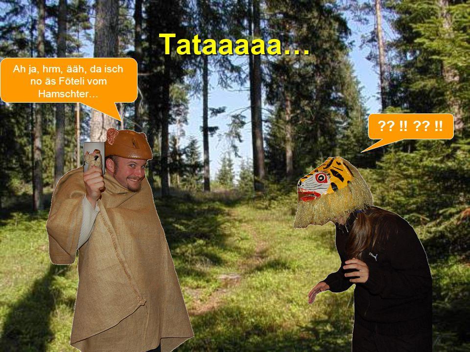 Tataaaaa… Ah ja, hrm, ääh, da isch no äs Föteli vom Hamschter… ?? !!