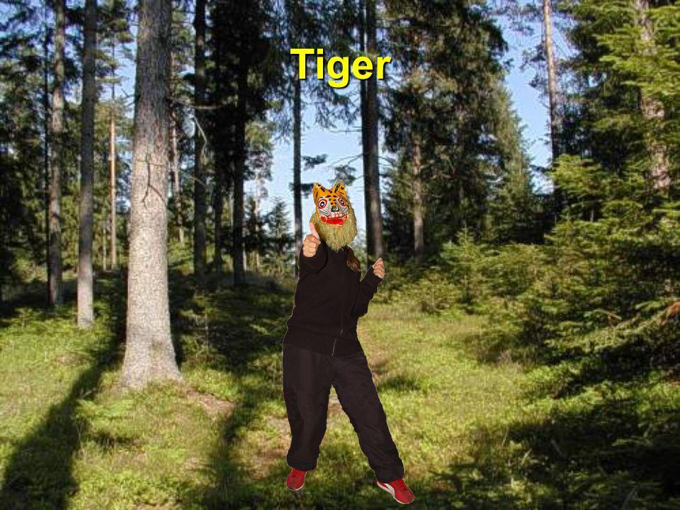 Dr Hamschter bim Elefant Bitte, bitte, liebä Elefant, nimm mi mit zum Geburifescht vom Tiger.