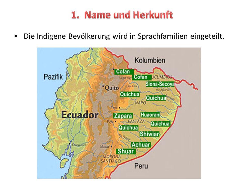 Die Indigene Bevölkerung wird in Sprachfamilien eingeteilt.