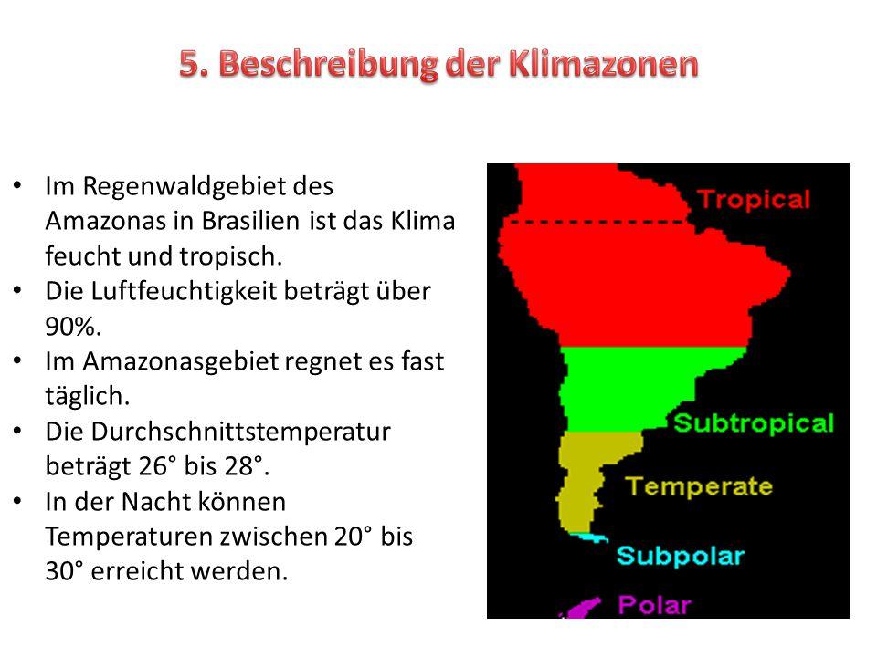 Im Regenwaldgebiet des Amazonas in Brasilien ist das Klima feucht und tropisch. Die Luftfeuchtigkeit beträgt über 90%. Im Amazonasgebiet regnet es fas