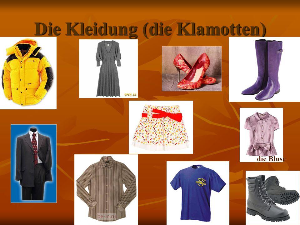 Die Kleidung (die Klamotten) die Bluse