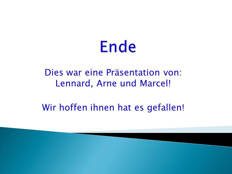 Dies war eine Präsentation von: Lennard, Arne und Marcel! Wir hoffen ihnen hat es gefallen !
