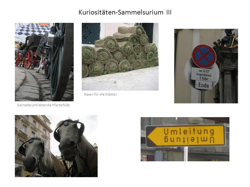 Kuriositäten-Sammelsurium III Rasen für die Städter Gemalte und lebende Pferdefüße