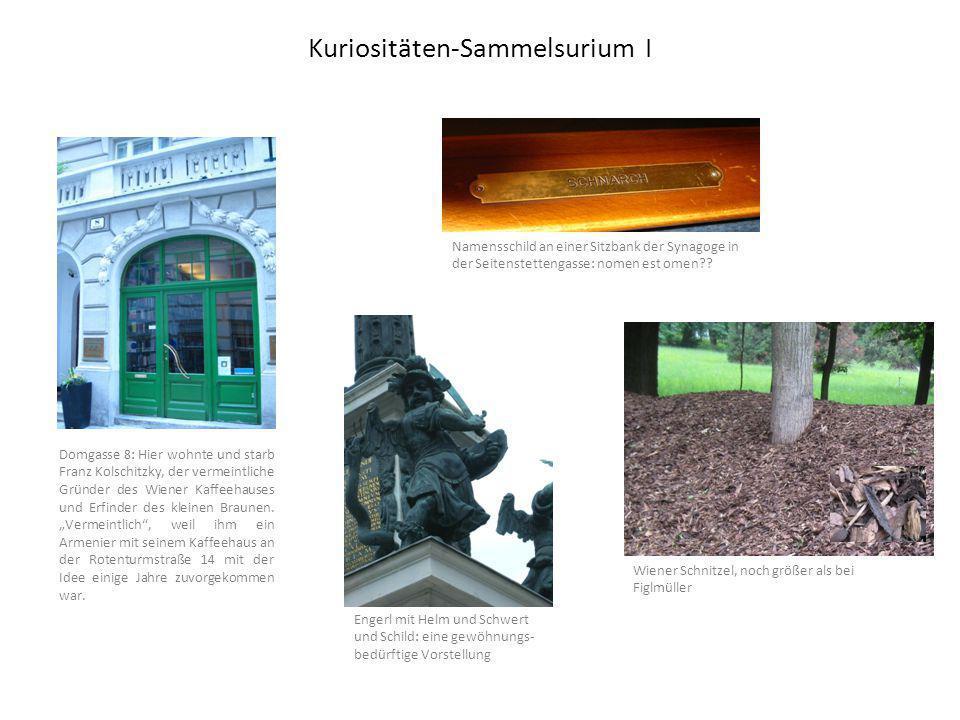 Kuriositäten-Sammelsurium I Namensschild an einer Sitzbank der Synagoge in der Seitenstettengasse: nomen est omen .