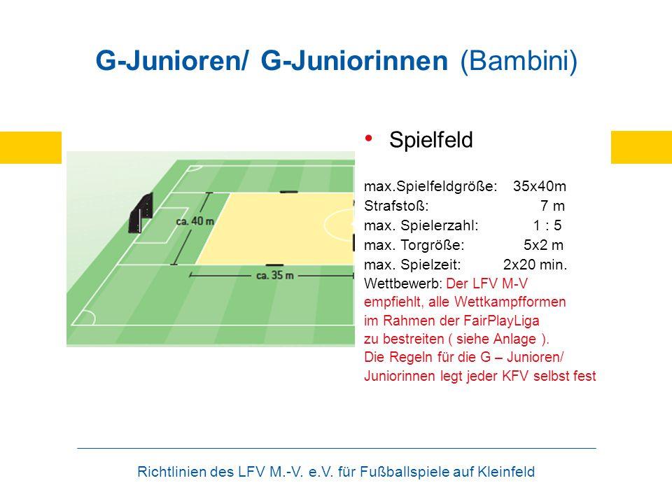 Richtlinien des LFV M.-V. e.V. für Fußballspiele auf Kleinfeld G-Junioren/ G-Juniorinnen (Bambini) Spielfeld max.Spielfeldgröße: 35x40m Strafstoß: 7 m