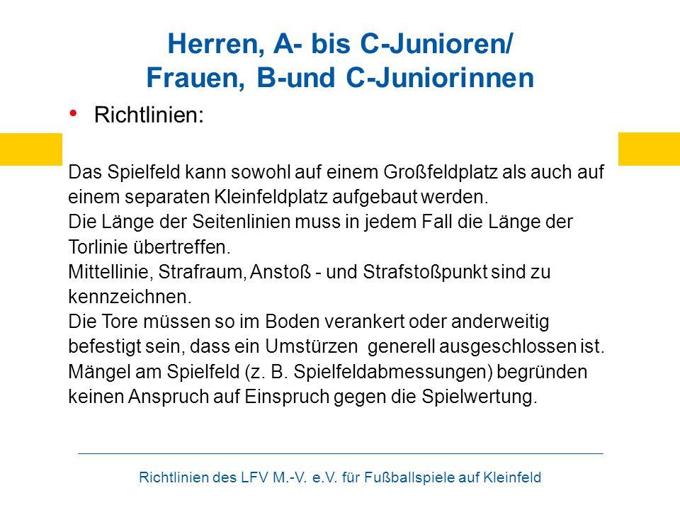 Richtlinien des LFV M.-V. e.V. für Fußballspiele auf Kleinfeld Herren, A- bis C-Junioren/ Frauen, B-und C-Juniorinnen Richtlinien: Das Spielfeld kann