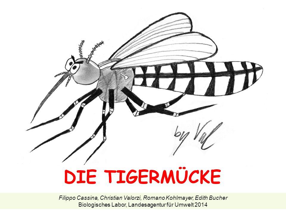 DIE TIGERMÜCKE Filippo Cassina, Christian Valorzi, Romano Kohlmayer, Edith Bucher Biologisches Labor, Landesagentur für Umwelt 2014