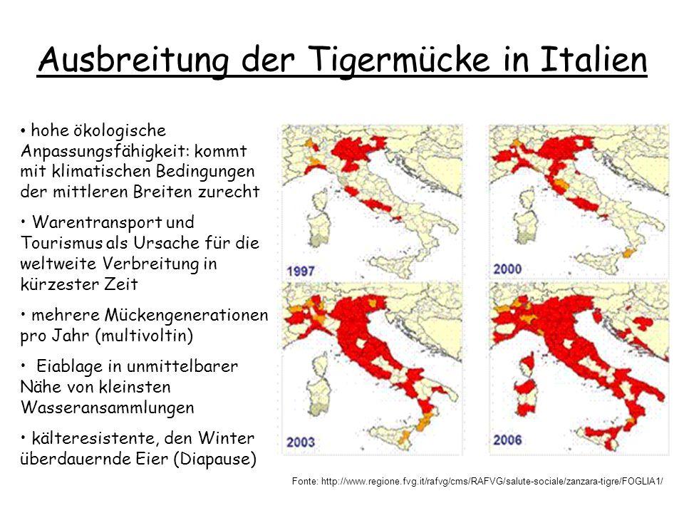 Ausbreitung der Tigermücke in Italien Fonte: http://www.regione.fvg.it/rafvg/cms/RAFVG/salute-sociale/zanzara-tigre/FOGLIA1/ hohe ökologische Anpassungsfähigkeit: kommt mit klimatischen Bedingungen der mittleren Breiten zurecht Warentransport und Tourismus als Ursache für die weltweite Verbreitung in kürzester Zeit mehrere Mückengenerationen pro Jahr (multivoltin) Eiablage in unmittelbarer Nähe von kleinsten Wasseransammlungen kälteresistente, den Winter überdauernde Eier (Diapause)