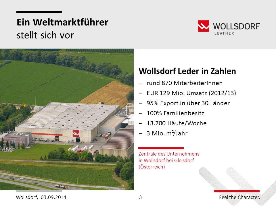 Wollsdorf,Feel the Character. Ein Weltmarktführer stellt sich vor Zentrale des Unternehmens in Wollsdorf bei Gleisdorf (Österreich) 03.09.20143 Wollsd
