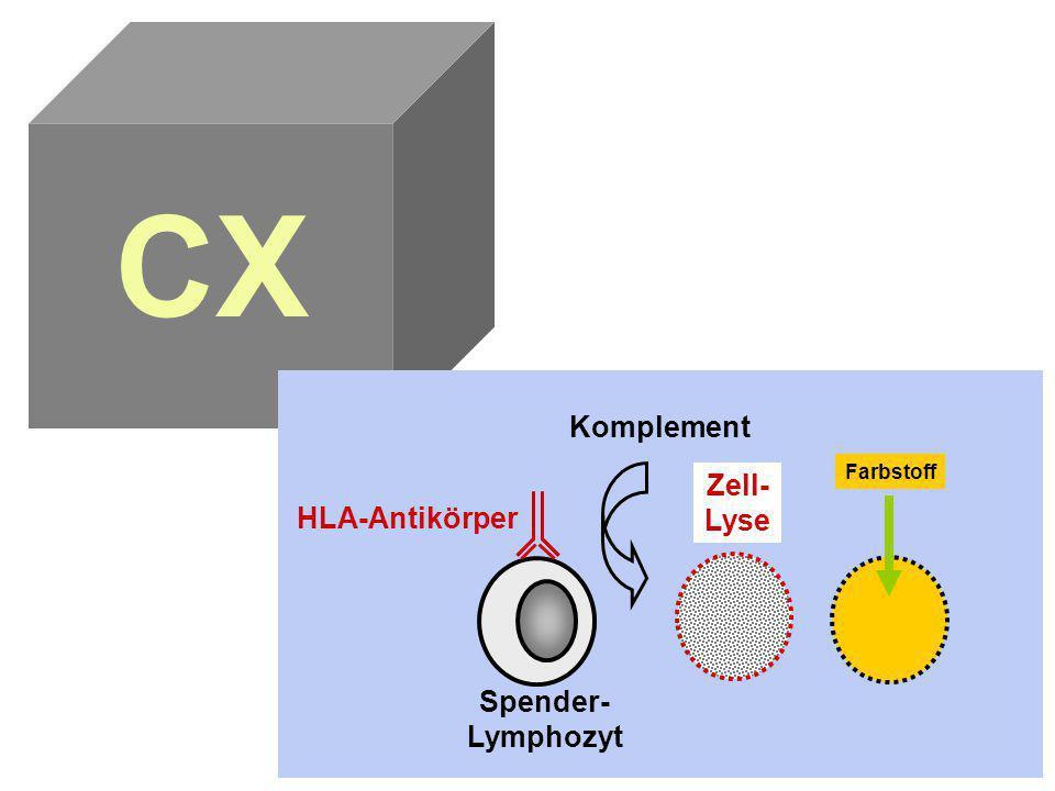 CX Komplement Zell- Lyse HLA-Antikörper Farbstoff Spender- Lymphozyt