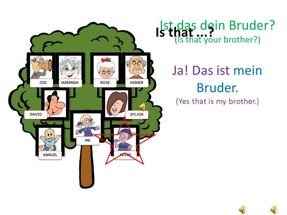 Ja.Das ist mein Bruder. (Yes that is my brother.) Ist das dein Bruder.