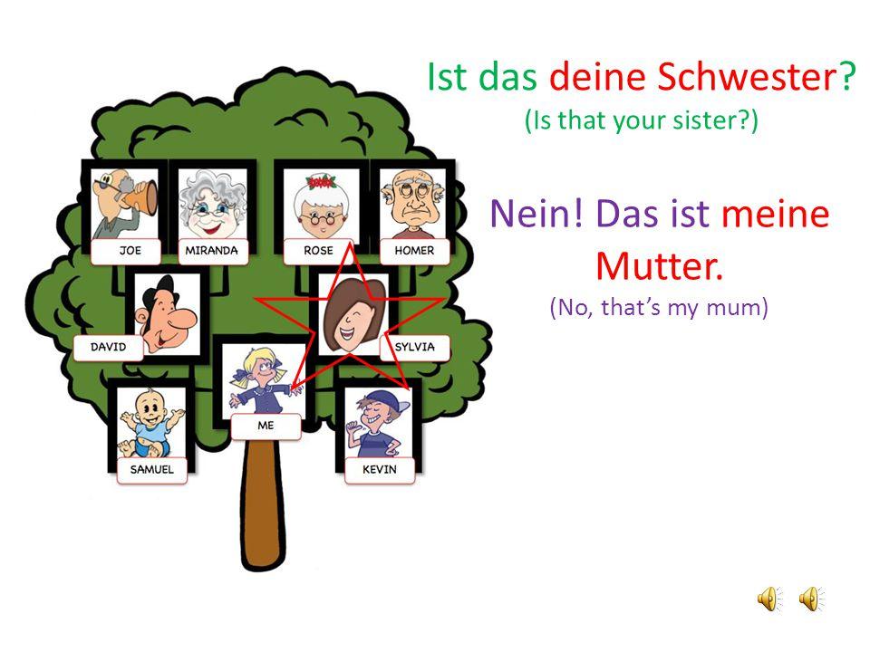 Nein! Das ist meine Mutter. (No, that's my mum) Ist das deine Schwester? (Is that your sister?)