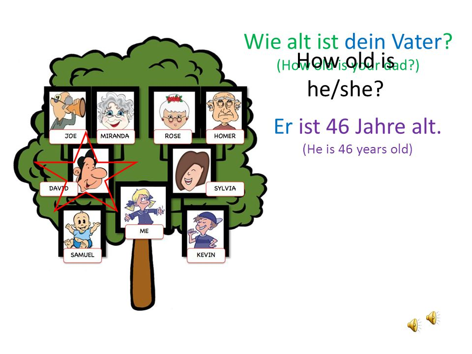 Sie wohnt in Berlin (He lives in Berlin) Wo wohnt deine Oma? (Where does your grandpa live?)