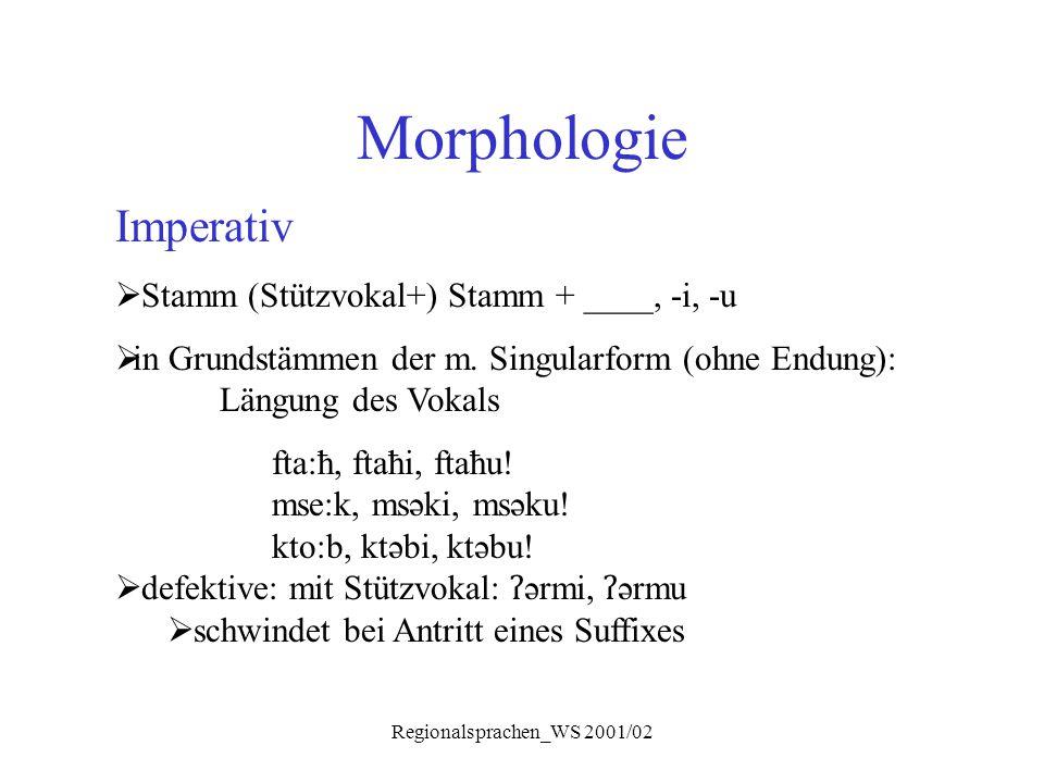 Regionalsprachen_WS 2001/02 Morphologie Imperativ  Stamm (Stützvokal+) Stamm + ____, -i, -u  in Grundstämmen der m. Singularform (ohne Endung): Läng