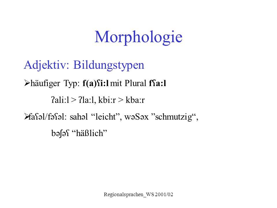 Regionalsprachen_WS 2001/02 Morphologie Adjektiv: Bildungstypen  häufiger Typ: f(a) ʕ i:l mit Plural f ʕ a:l ʔ ali:l > ʔ la:l, kbi:r > kba:r  fa ʕ ə