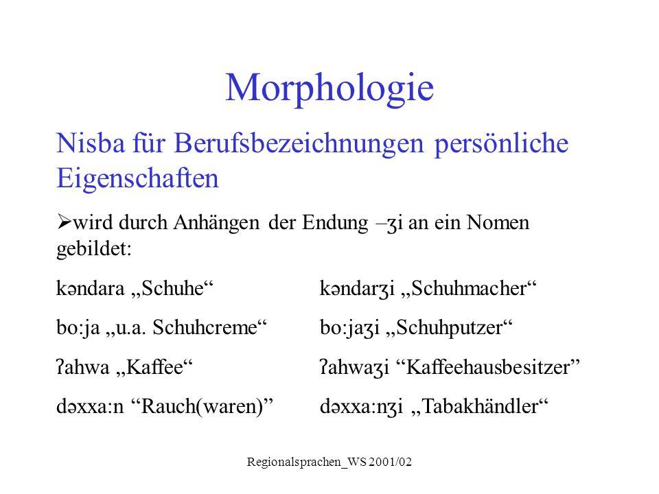 Regionalsprachen_WS 2001/02 Morphologie Nisba für Berufsbezeichnungen persönliche Eigenschaften  wird durch Anhängen der Endung – ʒ i an ein Nomen ge