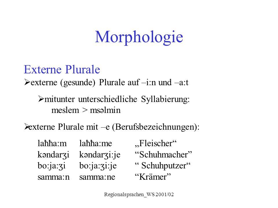 Regionalsprachen_WS 2001/02 Morphologie Externe Plurale  externe (gesunde) Plurale auf –i:n und –a:t  mitunter unterschiedliche Syllabierung: meslem