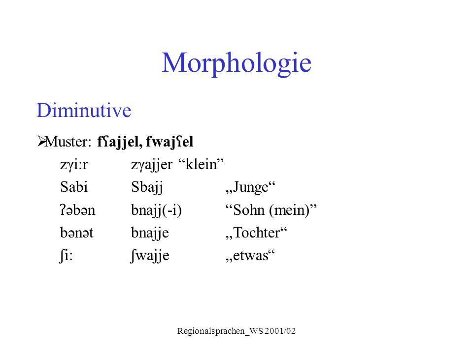 """Regionalsprachen_WS 2001/02 Morphologie Diminutive  Muster: f ʕ ajjel, fwaj ʕ el zγi:rzγajjer """"klein"""" SabiSbajj""""Junge"""" ʔ əbənbnajj(-i)""""Sohn (mein)"""" b"""