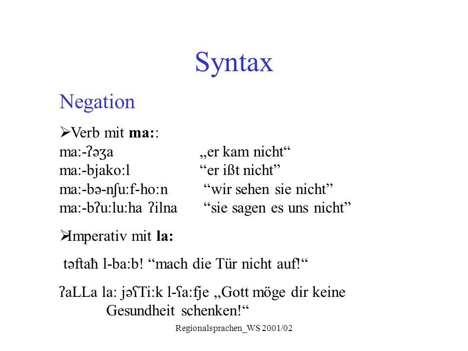 """Regionalsprachen_WS 2001/02 Syntax Negation  Verb mit ma:: ma:- ʔ ə ʒ a """"er kam nicht"""" ma:-bjako:l """"er ißt nicht"""" ma:-bə-n ʃ u:f-ho:n """"wir sehen sie"""