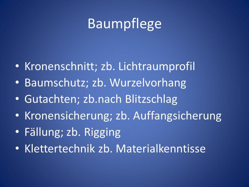 Baumpflege Kronenschnitt; zb.Lichtraumprofil Baumschutz; zb.