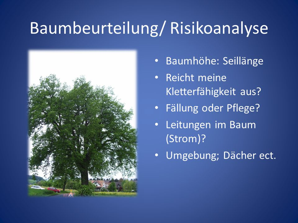 Baumbeurteilung/ Risikoanalyse Baumhöhe: Seillänge Reicht meine Kletterfähigkeit aus? Fällung oder Pflege? Leitungen im Baum (Strom)? Umgebung; Dächer