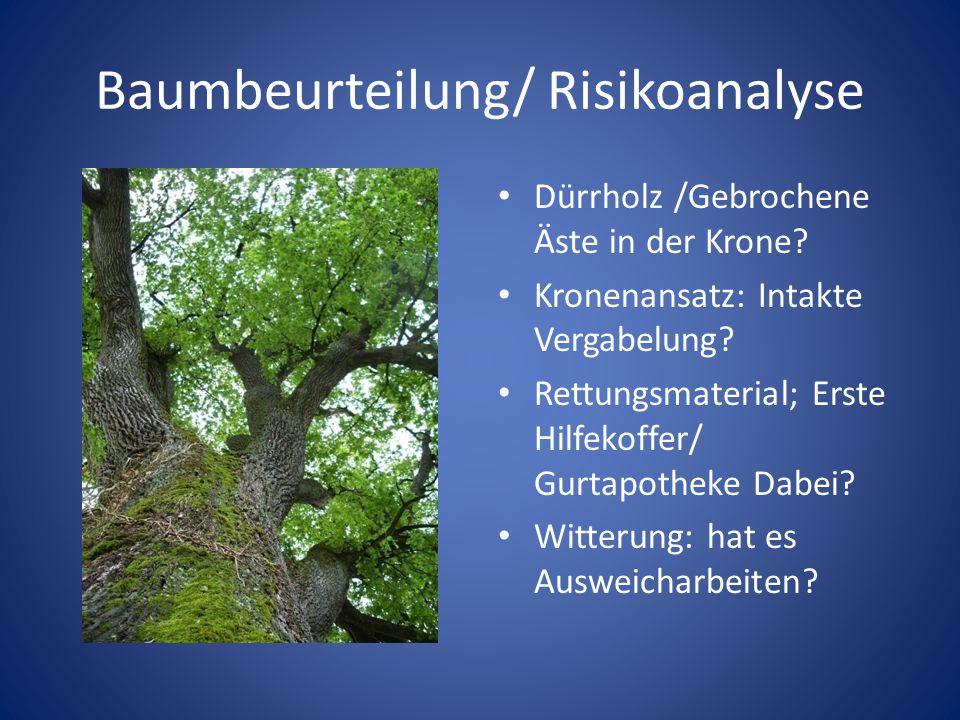 Baumbeurteilung/ Risikoanalyse Dürrholz /Gebrochene Äste in der Krone? Kronenansatz: Intakte Vergabelung? Rettungsmaterial; Erste Hilfekoffer/ Gurtapo