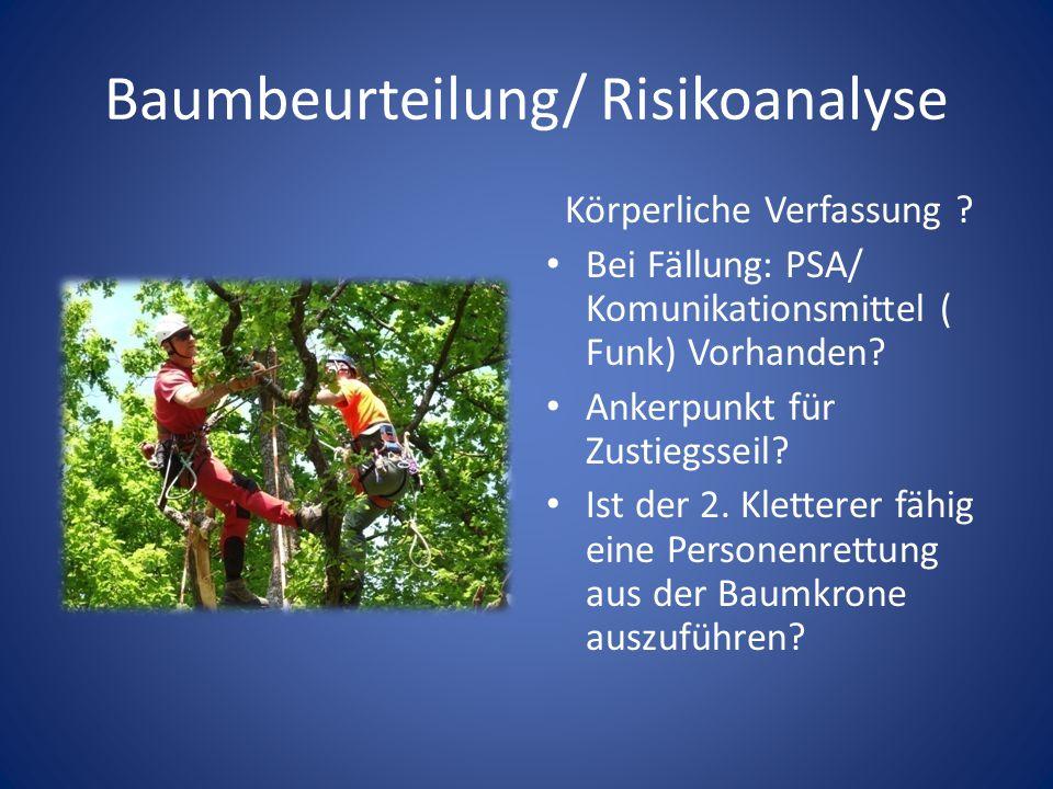 Baumbeurteilung/ Risikoanalyse Körperliche Verfassung ? Bei Fällung: PSA/ Komunikationsmittel ( Funk) Vorhanden? Ankerpunkt für Zustiegsseil? Ist der
