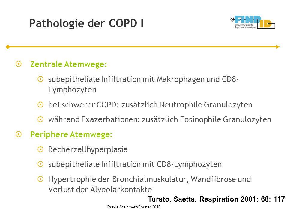 Pathologie der COPD I Turato, Saetta. Respiration 2001; 68: 117  Zentrale Atemwege:  subepitheliale Infiltration mit Makrophagen und CD8- Lymphozyte