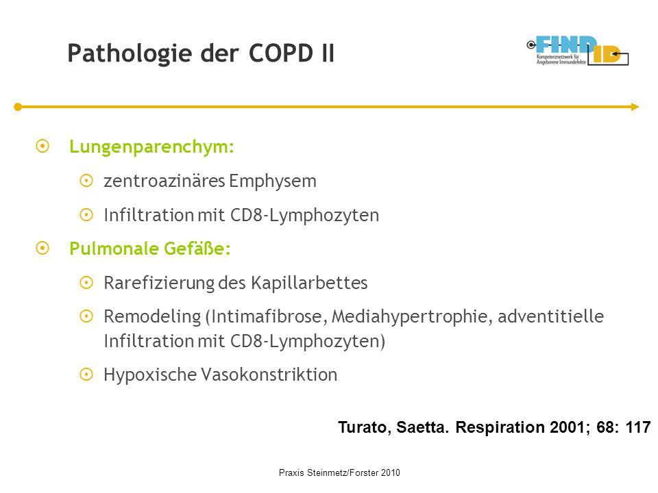 Pathologie der COPD II  Lungenparenchym:  zentroazinäres Emphysem  Infiltration mit CD8-Lymphozyten  Pulmonale Gefäße:  Rarefizierung des Kapilla