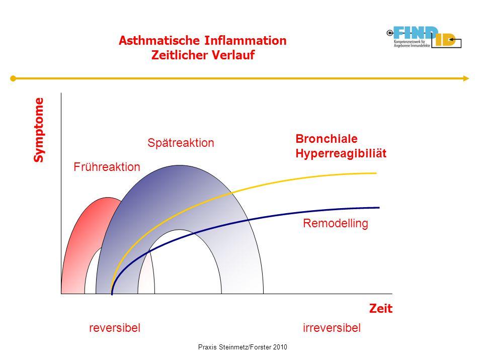 Asthmatische Inflammation Zeitlicher Verlauf Frühreaktion Spätreaktion Bronchiale Hyperreagibiliät Remodelling reversibelirreversibel Symptome Zeit