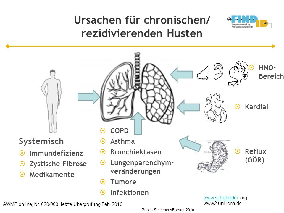 Ursachen für chronischen/ rezidivierenden Husten Systemisch  Immundefizienz  Zystische Fibrose  Medikamente www.schulbilderwww.schulbilder.org www2