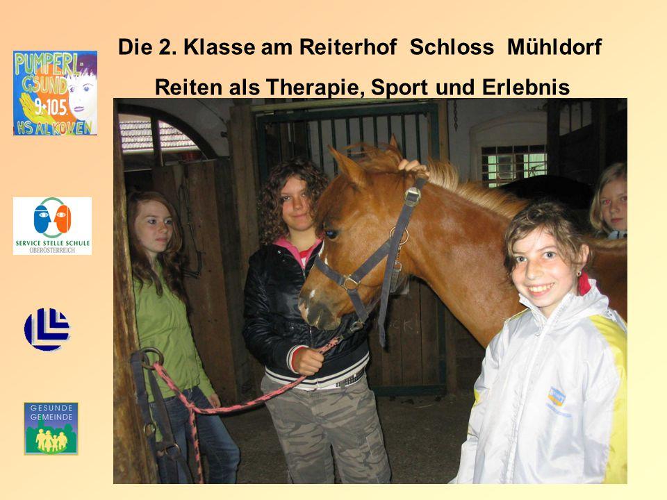 Die 2. Klasse am Reiterhof Schloss Mühldorf Reiten als Therapie, Sport und Erlebnis