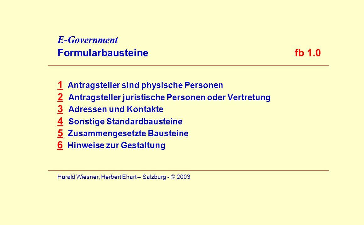 E-Government Formularbausteine fb 1.0 1 Antragsteller sind physische Personen 2 Antragsteller juristische Personen oder Vertretung 3 Adressen und Kont