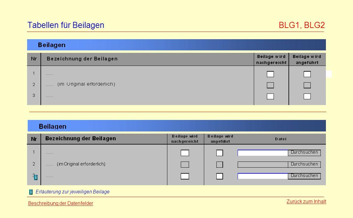 Tabellen für Beilagen BLG1, BLG2 Zurück zum Inhalt Erläuterung zur jeweiligen Beilage Beschreibung der Datenfelder