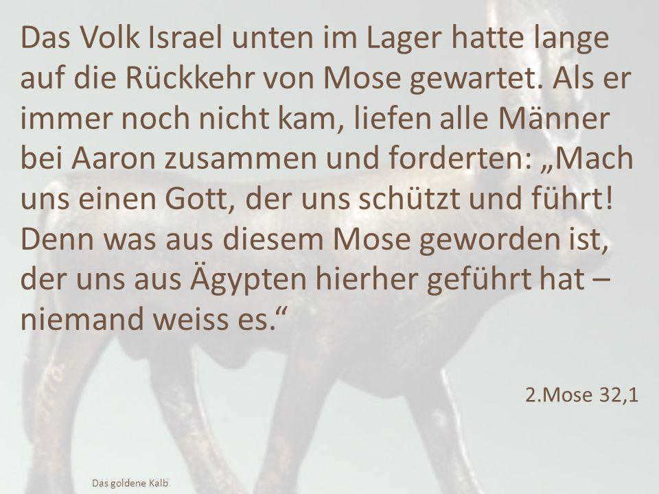 Das Volk Israel unten im Lager hatte lange auf die Rückkehr von Mose gewartet. Als er immer noch nicht kam, liefen alle Männer bei Aaron zusammen und
