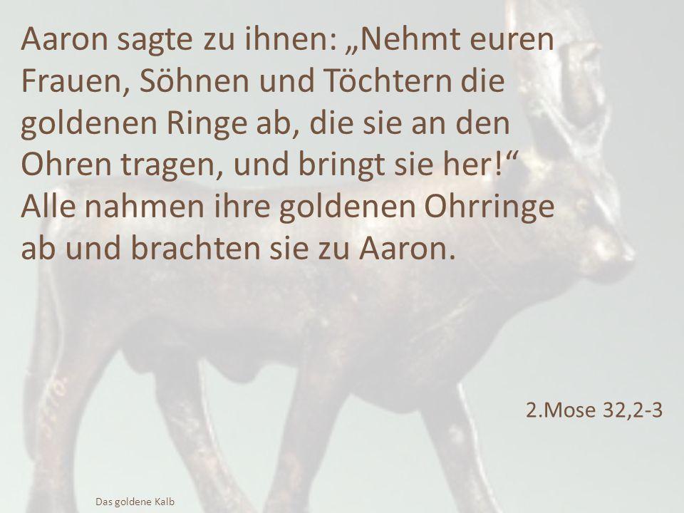 """Aaron sagte zu ihnen: """"Nehmt euren Frauen, Söhnen und Töchtern die goldenen Ringe ab, die sie an den Ohren tragen, und bringt sie her!"""" Alle nahmen ih"""